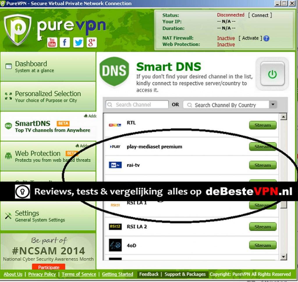 smart DNS purevpn