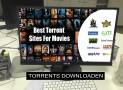 Veilig torrents downloaden | Met een VPN service is dit mogelijk